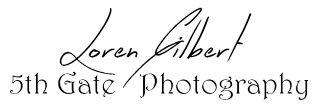 Loren Gilbert - Artist Website